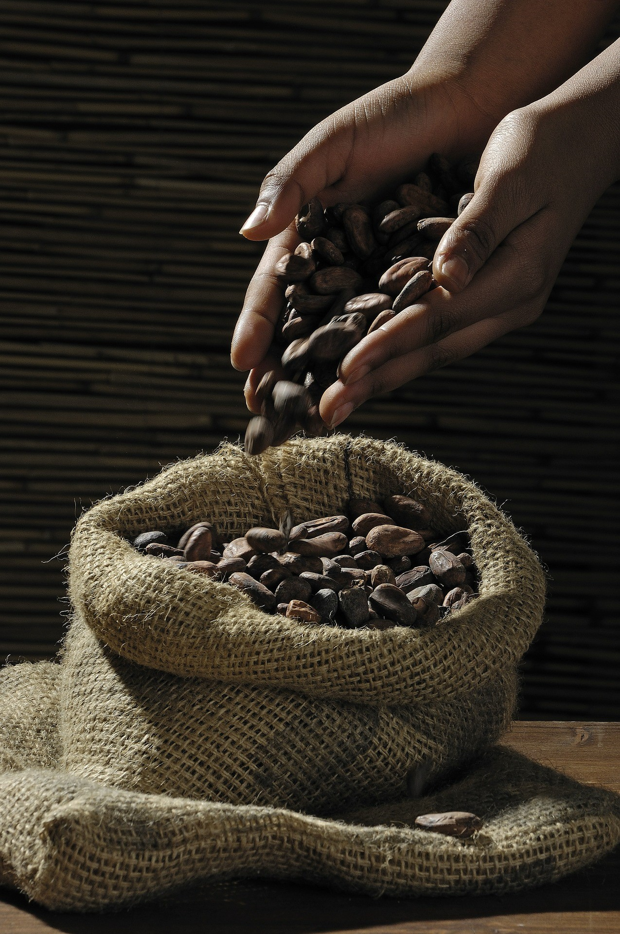 cocoa-beans-499970_1920